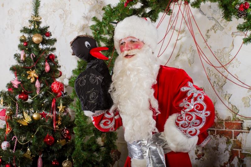 Дед Мороз и Ворона